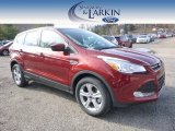 2015 Sunset Metallic Ford Escape SE #99250579