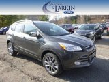2015 Magnetic Metallic Ford Escape SE 4WD #99250577