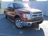 2014 Sunset Ford F150 XLT SuperCab #99250684