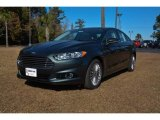 2015 Guard Metallic Ford Fusion Titanium #99327356