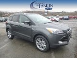 2015 Magnetic Metallic Ford Escape Titanium 4WD #99375144