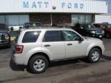 2009 Light Sage Metallic Ford Escape XLT #9942317