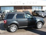 2009 Black Pearl Slate Metallic Ford Escape XLT V6 4WD #9942312