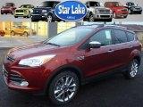 2015 Sunset Metallic Ford Escape SE 4WD #99530334