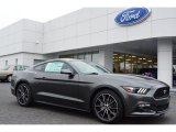 2015 Magnetic Metallic Ford Mustang EcoBoost Coupe #99553771
