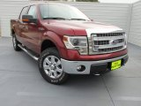 2014 Sunset Ford F150 XLT SuperCrew 4x4 #99553824