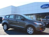 2015 Magnetic Metallic Ford Escape S #99902402