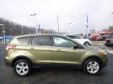 2014 Ginger Ale Ford Escape SE 2.0L EcoBoost 4WD #99929360