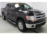 2013 Kodiak Brown Metallic Ford F150 XLT SuperCrew 4x4 #99929253