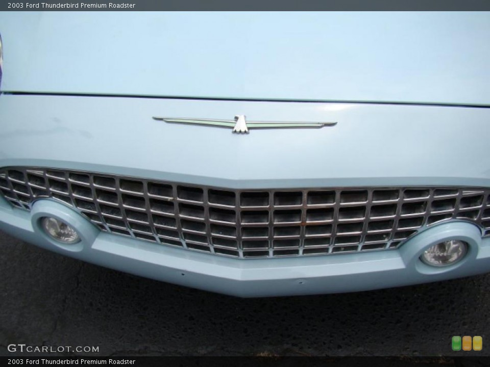 2003 Ford Thunderbird Custom Badge and Logo Photo #49267784