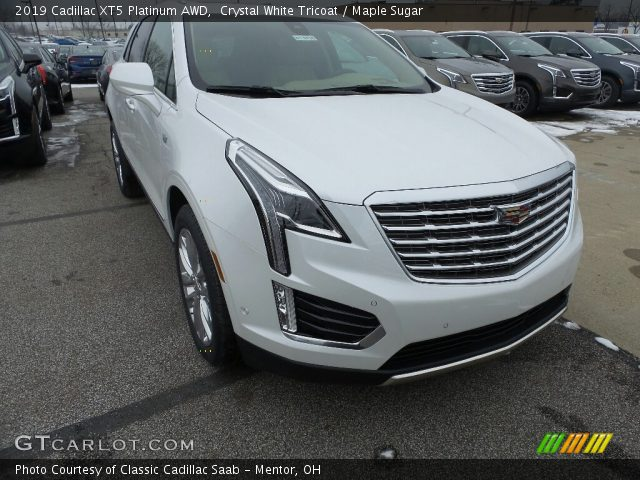 2019 Cadillac XT5 Platinum AWD in Crystal White Tricoat