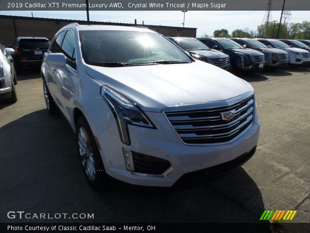 2019 Cadillac XT5 Premium Luxury AWD in Crystal White Tricoat