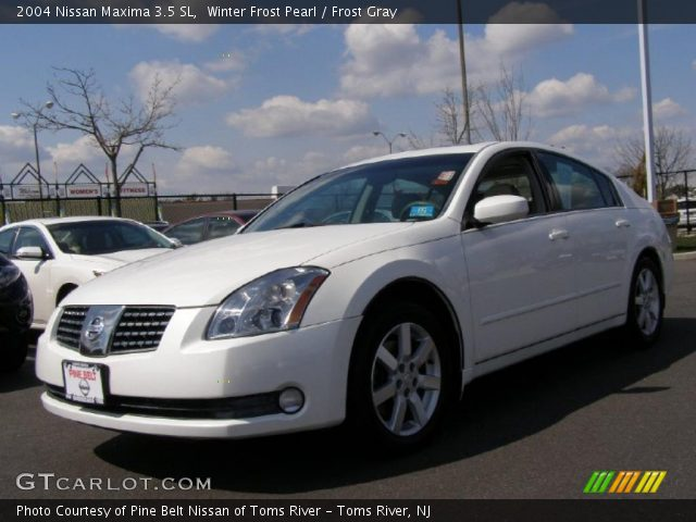 winter frost pearl 2004 nissan maxima 3 5 sl frost gray interior vehicle. Black Bedroom Furniture Sets. Home Design Ideas