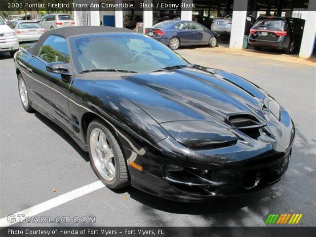 Black 2002 Pontiac Firebird Trans Am Convertible Ebony Black Interior