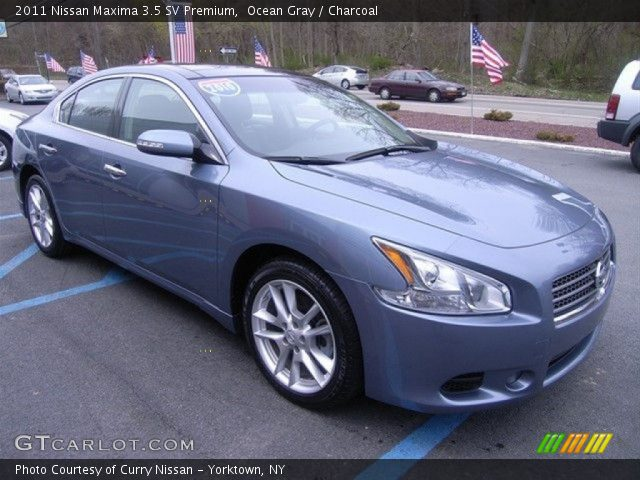 ocean gray 2011 nissan maxima 3 5 sv premium charcoal interior vehicle. Black Bedroom Furniture Sets. Home Design Ideas