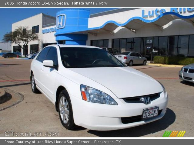 taffeta white 2005 honda accord ex l v6 sedan ivory interior vehicle. Black Bedroom Furniture Sets. Home Design Ideas