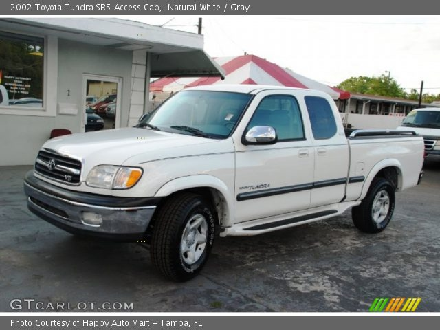 natural white 2002 toyota tundra sr5 access cab gray interior vehicle. Black Bedroom Furniture Sets. Home Design Ideas