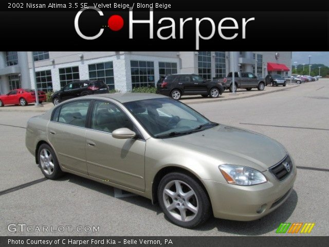 velvet beige 2002 nissan altima 3 5 se blond beige. Black Bedroom Furniture Sets. Home Design Ideas