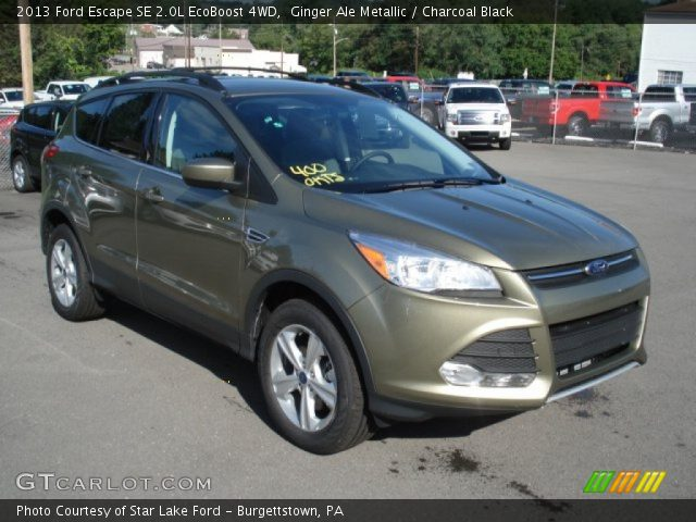 ginger ale metallic 2013 ford escape se 2 0l ecoboost 4wd charcoal black interior gtcarlot. Black Bedroom Furniture Sets. Home Design Ideas