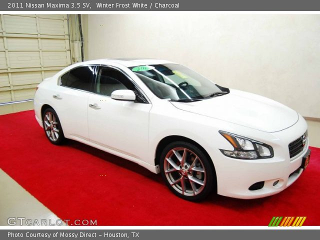 winter frost white 2011 nissan maxima 3 5 sv charcoal interior vehicle. Black Bedroom Furniture Sets. Home Design Ideas