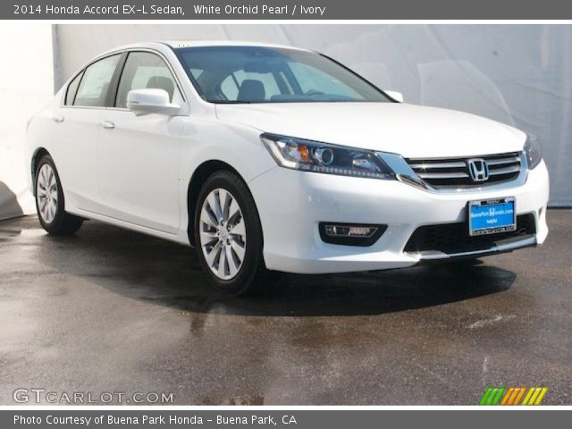White orchid pearl 2014 honda accord ex l sedan ivory for 2014 honda accord white