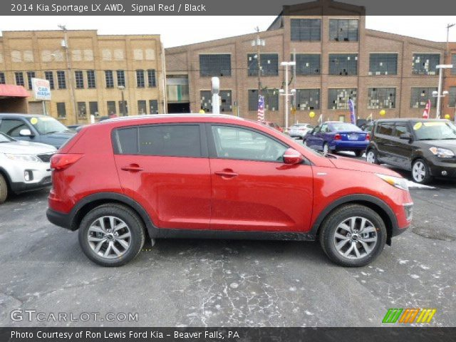 signal red 2014 kia sportage lx awd black interior vehicle archive 88818120. Black Bedroom Furniture Sets. Home Design Ideas