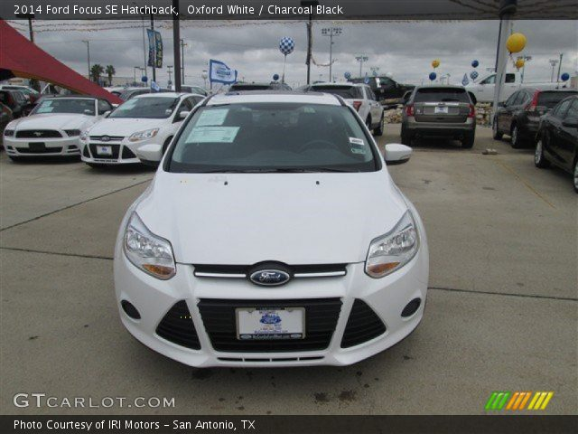 Ford focus 2014 hatchback white