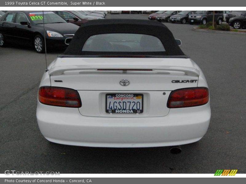 1999 toyota celica gt convertible in super white photo no. Black Bedroom Furniture Sets. Home Design Ideas