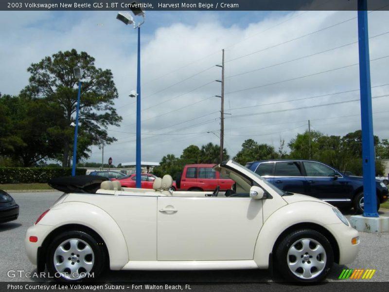 2003 Volkswagen New Beetle Gls 1 8t Convertible In Harvest