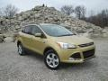 2014 Karat Gold Ford Escape SE 1.6L EcoBoost 4WD  photo #1