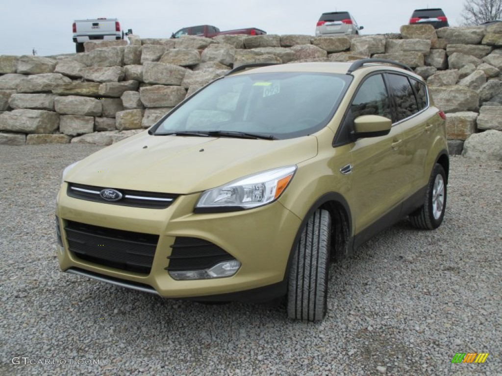 2014 Escape SE 1.6L EcoBoost 4WD - Karat Gold / Charcoal Black photo #2