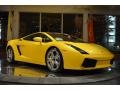 Giallo Midas - Gallardo Coupe E-Gear Photo No. 11