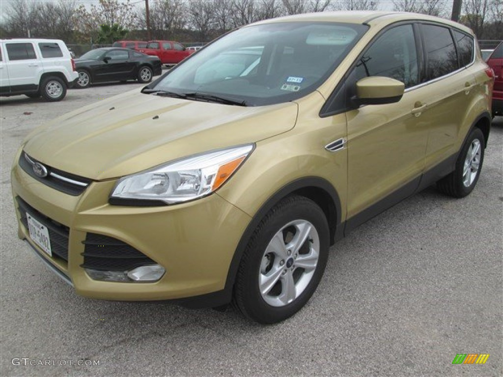 2014 Escape SE 1.6L EcoBoost - Karat Gold / Charcoal Black photo #6