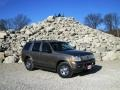 2002 Mineral Grey Metallic Ford Explorer Limited 4x4 #100327625