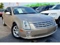 Sand Storm 2005 Cadillac STS V8