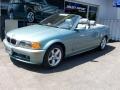 Grey Green Metallic 2003 BMW 3 Series 325i Convertible