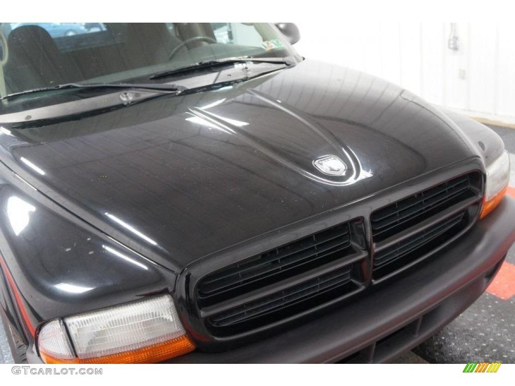 2003 Dakota Regular Cab 4x4 - Black / Dark Slate Gray photo #36