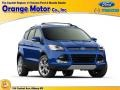 2015 Deep Impact Blue Metallic Ford Escape SE 4WD #102308313