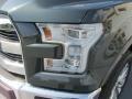 Guard Metallic - F150 King Ranch SuperCrew 4x4 Photo No. 9