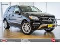 Black 2015 Mercedes-Benz ML 350