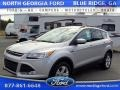 2015 Ingot Silver Metallic Ford Escape SE #105081837