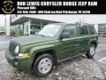 Jeep Green Metallic 2008 Jeep Patriot Sport