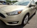 2015 Tectonic Metallic Ford Focus SE Hatchback  photo #35