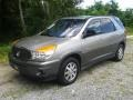 Light Driftwood 2002 Buick Rendezvous CX