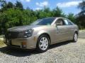 2004 Cashmere Cadillac CTS Sedan #106113761