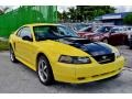 2002 Zinc Yellow Ford Mustang V6 Coupe  photo #4