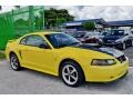 2002 Zinc Yellow Ford Mustang V6 Coupe  photo #5