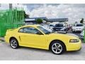 2002 Zinc Yellow Ford Mustang V6 Coupe  photo #6