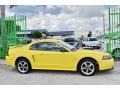 2002 Zinc Yellow Ford Mustang V6 Coupe  photo #7