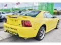 2002 Zinc Yellow Ford Mustang V6 Coupe  photo #10